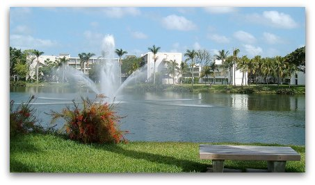 University of Miami, crna