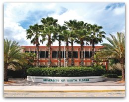 University of South Florida, CRNA