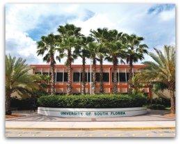 University of South Florida, CRNA