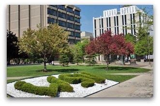 Wayne State University Detroit MI